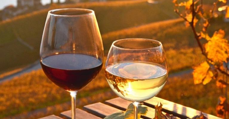 settori-vino